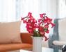 HausDegelstein: Wohnung 1 – Wohnzimmer BildNr. 1