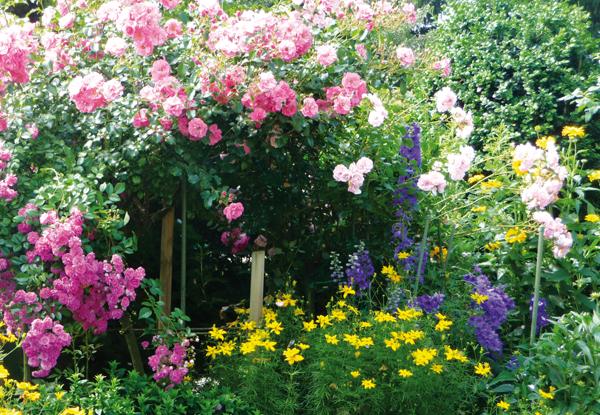 HausDegelstein: Garten BildNr. 2