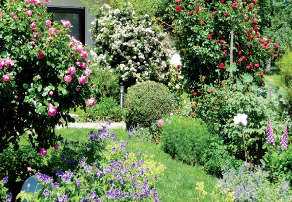 HausDegelstein: Garten BildNr. 3