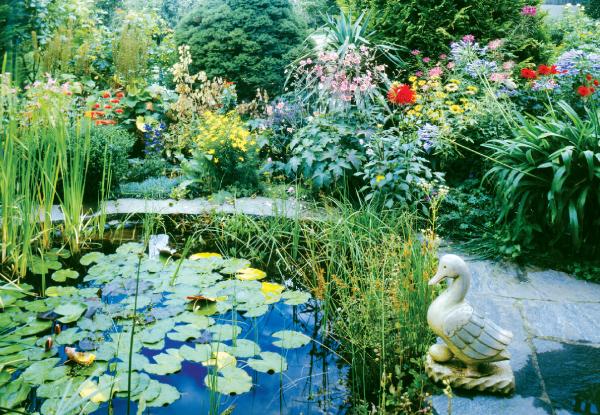 HausDegelstein: Garten BildNr. 4